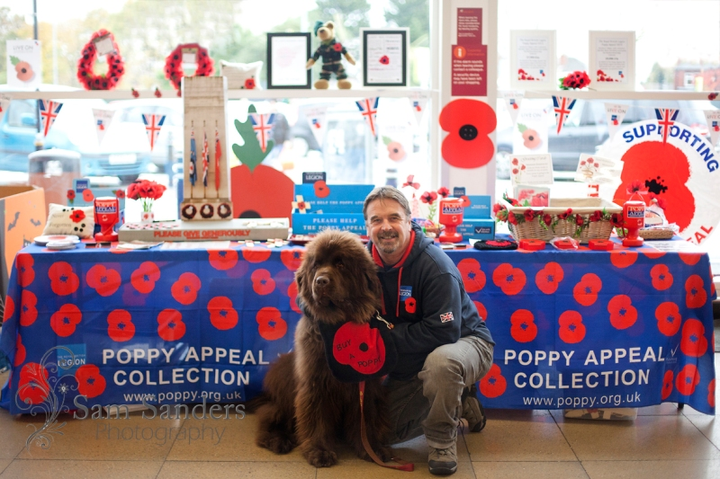 poppy-appeal-british-legion-wigan