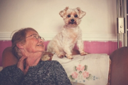 sam_sanders_photography_wigan_photographer_pet_dog_portrait_lifestyle_session_jpg_010